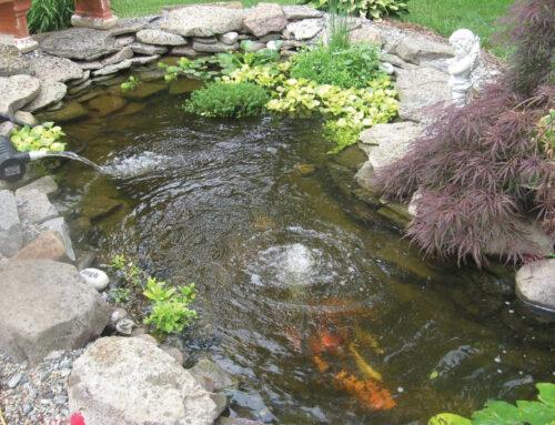 Koi Pond Aeration